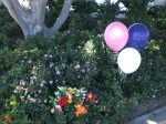 Balloons Added by an Angel